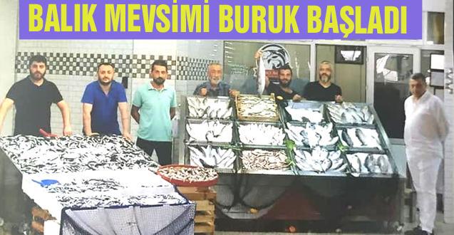 BALIK MEVSİMİ BURUK BAŞLADI
