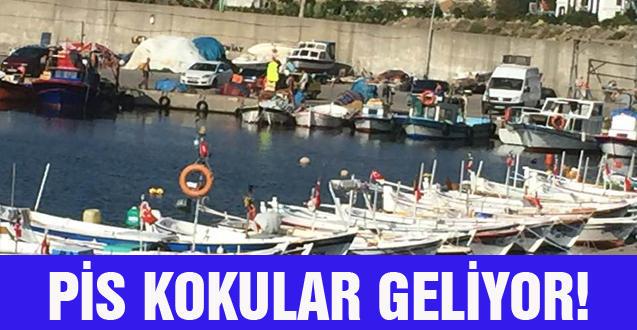 PİS KOKULAR GELİYOR!