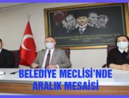 BELEDİYE MECLİSİ'NDE ARALIK MESAİSİ